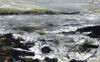 DONAGH CAREY ~ Rising Tide, Crewe - oil on board - 14 x 23 cm - €200 - SOLD