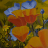 LENORE COLLINS ~ Californian Poppies - oil on canvas - 30 x 30 cm - €700