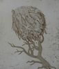 AKINO / O'FARRELL ~ Banshee of the Trees- etching & aquatint - 22 x 19 cm - €225 - ONE SOLD