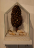 ANGIE SHANAHAN ~ Glasshouse Cluster - found objects with gold leaf - 17 x 10 cm - €550