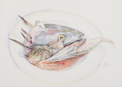 ANN MARTIN ~ Bouillebaise Schull, Co.Cork - watercolour - 38 x 56 cm - €800