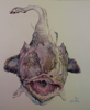 ANN MARTIN - Cheers, Monkfish Mother in law - watercolour on rag - 70 x 62.5 cm - €3400