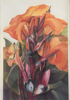BIRGITTA SAFLUND - Canna Lillies - watercolour - €550