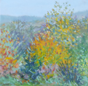DAMARIS LYSAGHT - Autumn, Coolcaha 1 - oil on plywod - 15 x 15 cm -€285
