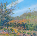 DAMARIS LYSAGHT - Autumn, Coolcaha 2 - oil on plywod - 15 x 15 cm - €285