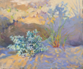 DAMARIS LYSAGHT ~ Last Rays, Barley Cove - Oil on Canvas on Board - 25 x 30 cm - €650