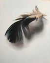 DIANE KINGSTON - Feather - oil on canvas - €425