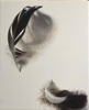 DIANE KINGSTON - Feather - oil on paper - €425