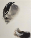 DIANE KINGSTON - Feathers- oil on canvas - €425