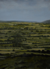 DIARMUID BREEN ~ Dream of Trees - oil on canvas - 40 x 30 cm - €450