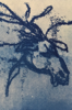 GINNY PAVRY ~ The King's Horse - cyanotype on paper - 9 x 13 cm - €90