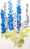 GRÁINNE CUFFE ~ Delphiniums II - etching - 140 x 90 cm - TWO SOLD