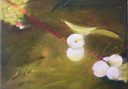 HELEN O'KEEFFE - Snowberry - oil on canvas - 15 x 20 cm -€300