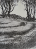 JANET MURRAN ~ Two Trees X - pencil on canvas - 38 x 31 cm - €245
