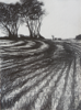 JANET MURRAN ~ Two Trees VI - pencil on canvas - 38 x 31 cm - €245