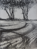 JANET MURRAN ~ Two Trees IX - pencil on canvas - 38 x 31 cm - €245