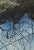 JANET MURRAN - Reflections River Ilen - acrylic & charcoal on fabriano - 32 x 24 cm - guide price €155