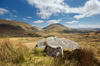 KEN WILLIAMS - Derrynablaha - photograph - various sizes and prices from €60