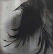 LAURA WADE - Wing - indian ink on cotton paper - 40 x 40 cm - €350
