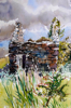 PATRICIA CARR ~ Small Ruin with Blackthorn - watercolour, pen & ink - 62 x 54 cm - €500
