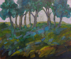 TERRY SEARLE ~ Early Morning Coolnaclehy -  acrylic on canvas - 51 x 61 cm - €700